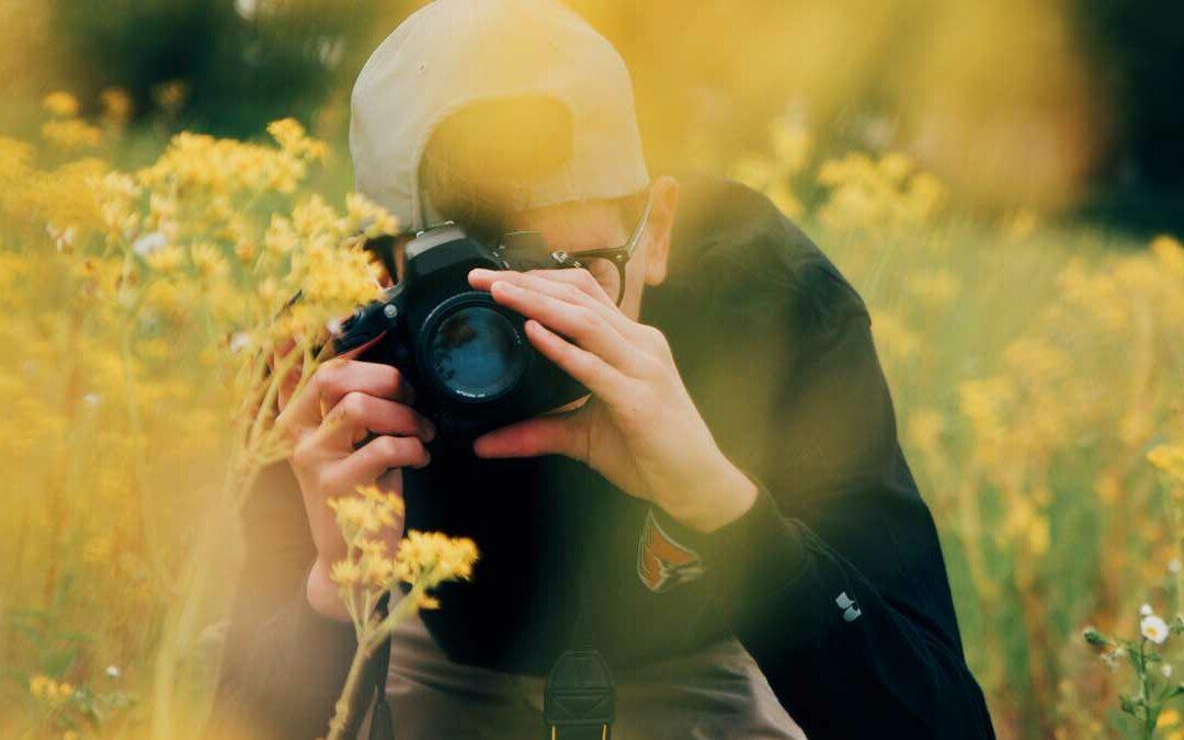 Foto-Vote »Bienenoase des Monats«